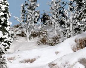 Zand en Sneeuw