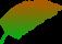 Bladeren-en-Planten