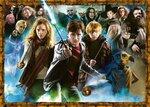 Ravensburger De Tovenaarsleerling Harry Potter #151714