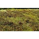AMMO MIG Grass Mats Small Bushes Autumn (8359)