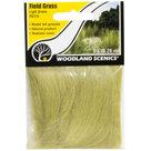 Woodland Field Grass: Light Green