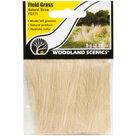 Woodland Field Grass: Natural Straw
