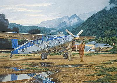 Roden Pilatus PC-6C / H-2 Turbo Porter 1:48