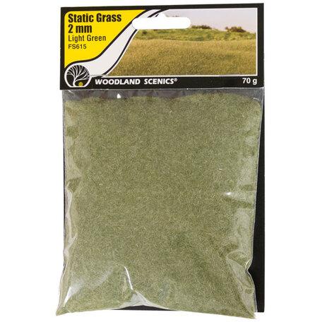 Woodland Static Grass: Light Green 2 mm